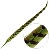 Reeves Pheasant Tail 20-25in (3pcs) Dyed Lime Green